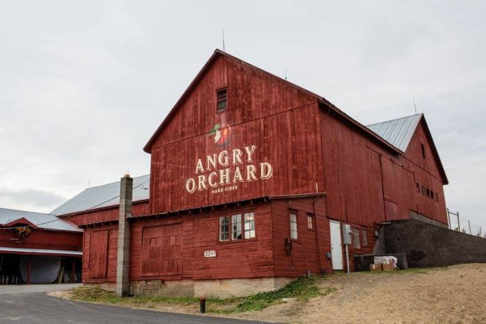 AngryOrchard3