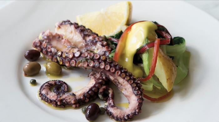 octopus (1)