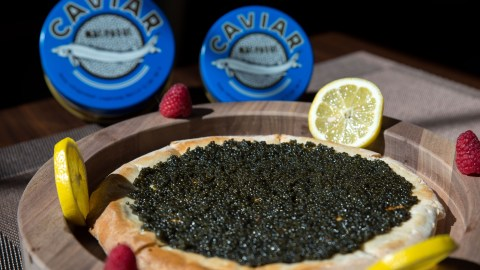Caviar Pizza