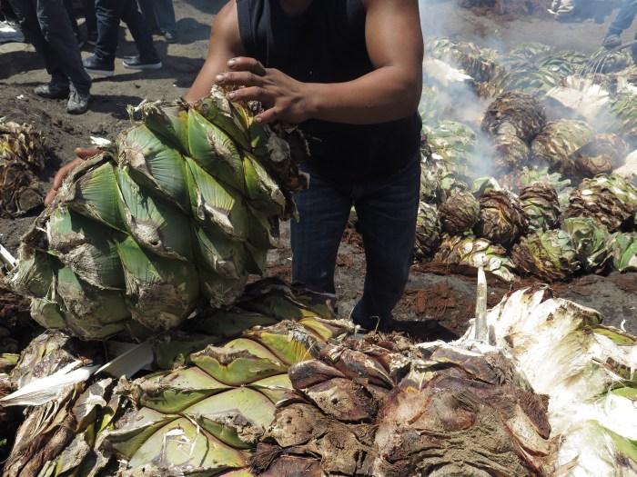 El Silencio palenque roasting Espadin_RSigner