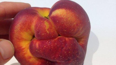 fist+peach_misfit
