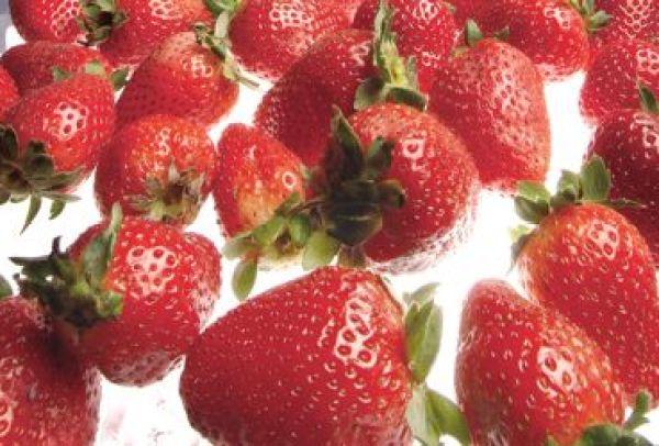 strawberries-406.jpg
