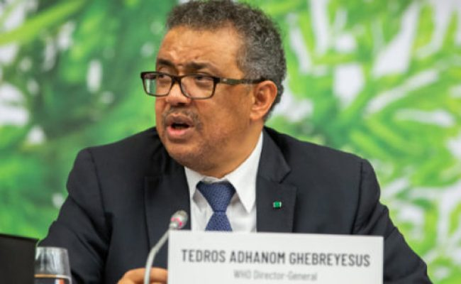 Who Chief Calls For Food Safety Focus Food Safety News