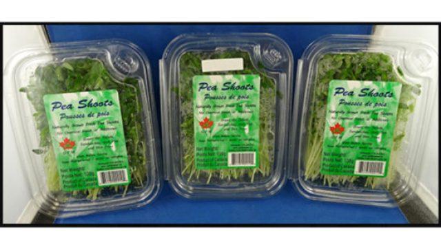 recalled pea shoots Listeria CFIA expansion