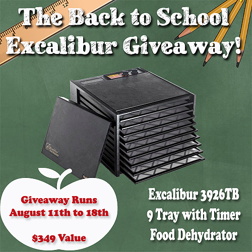 Back To School Excalibur Giveaway
