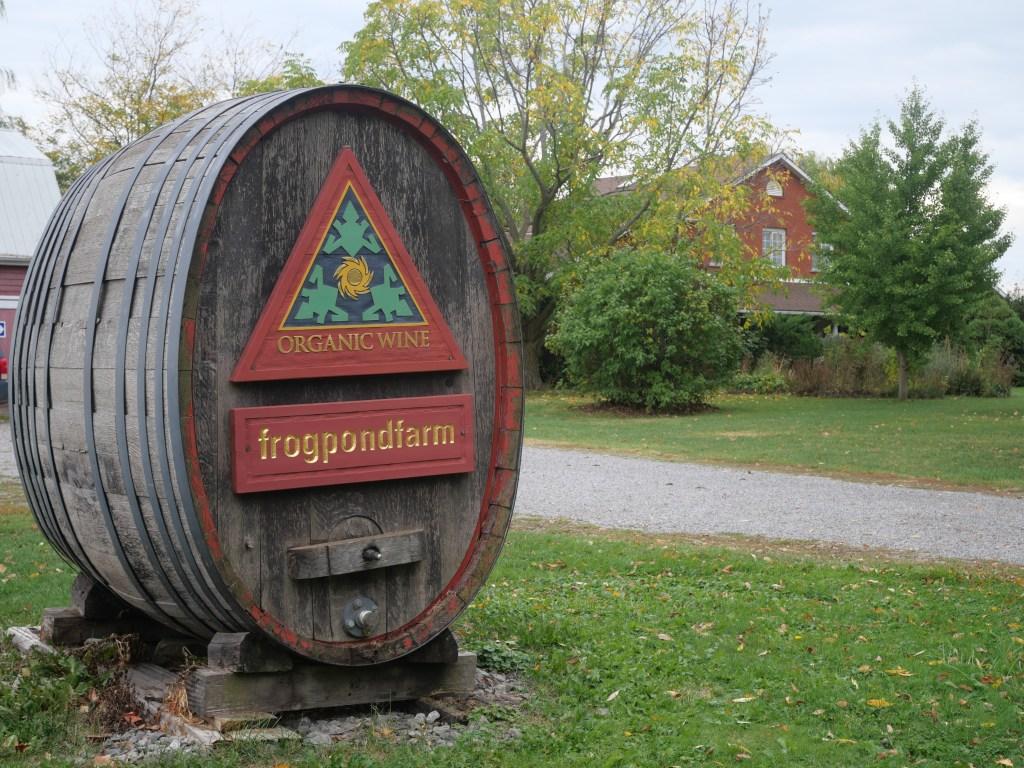 Frogpond winery