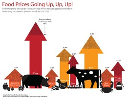 MacBlog_FoodPrice-copy