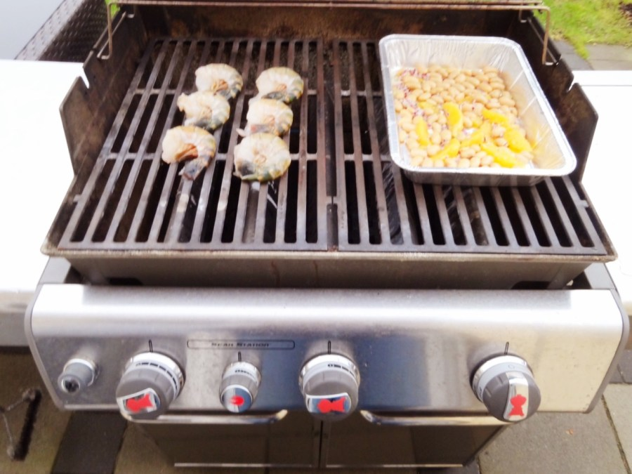 Hummerkrabben vom Grill mit lauwarmen Bohnen-Orangensalat