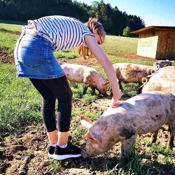 Liv und Weideschwein
