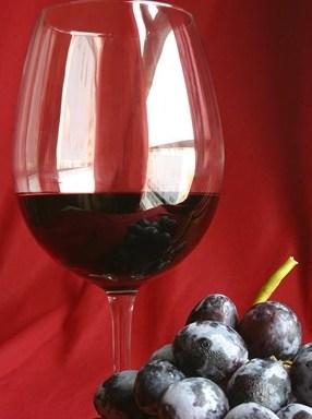 Wine/ Unione Italiana Vini, al via il Codice della Vite e del Vino 2017