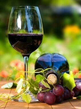 vino rosso3