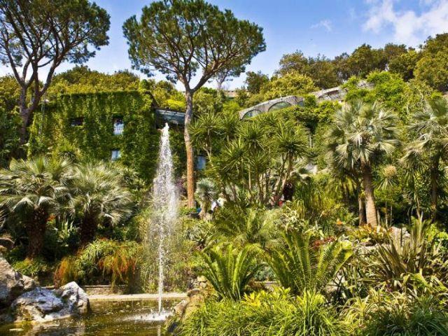 giardini-la-mortella-forio-696x522