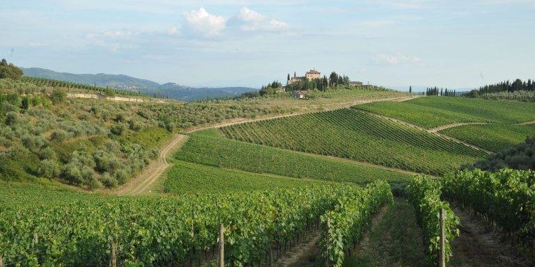 WINE/ VINO CHIANTI: CALO DI PRODUZIONE DEL 15% REGIONE TOSCANA APPROVA L'ISTANZA DEL CONSORZIO