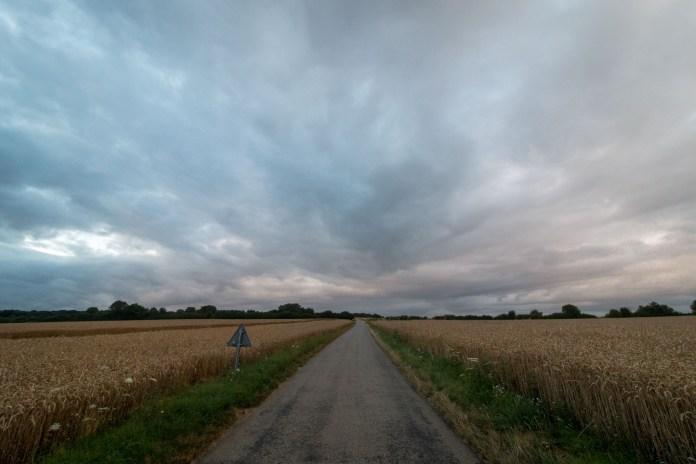Encore des champs de blés, avec une super route en plus.