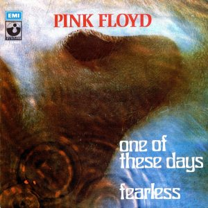 pink floy fearless