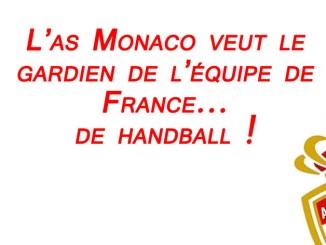 Après Falcao, l'AS Monaco s'attaque au meilleur gardien... de handball !
