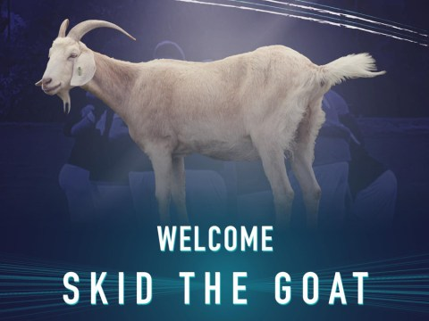 #GOATANNOUNCED Caversham United come good on promise