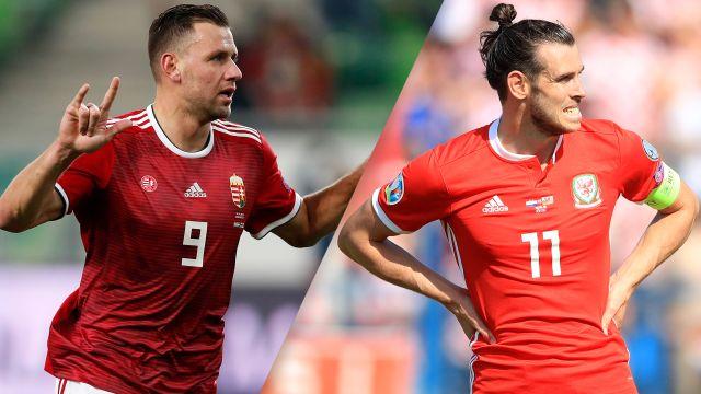 युरो कप छनौटमा आज अन्तिम १० खेल हुँदै : वेल्स 'गर कि मर' को अवस्थामा
