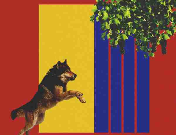 FC Barcelona, The Fox in a Wolf's Den - An Alternative Match Report