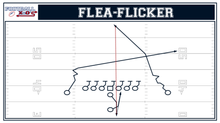 Flea Flicker