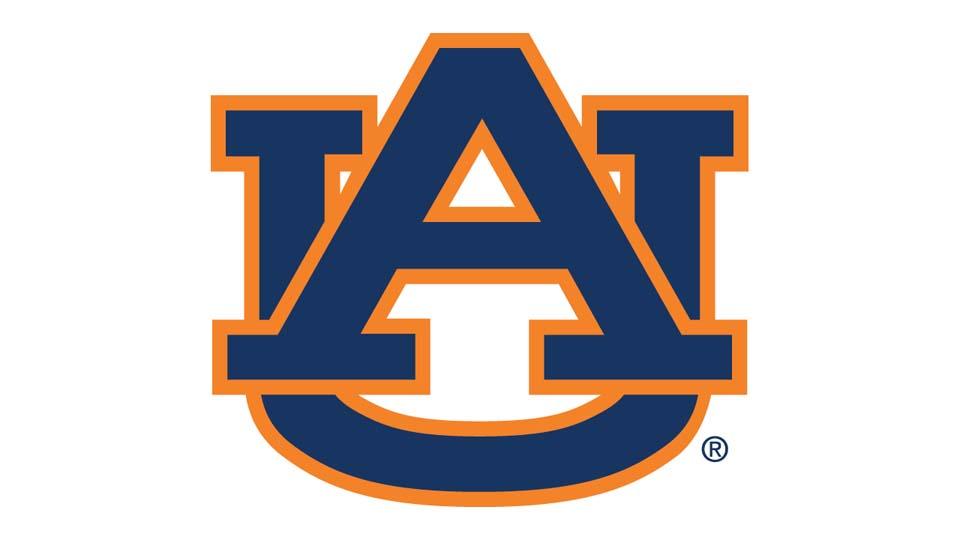 Auburn Tigers Spread Offense (2010) - Gus Malzahn