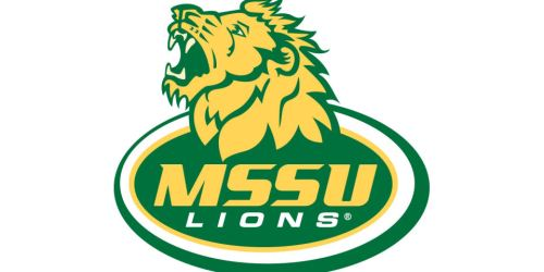 Missouri Southern Lions 3-3 Stack Defense (2003)