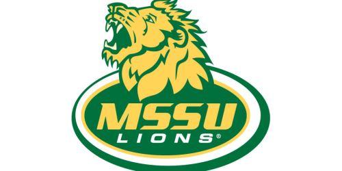 Missouri Southern Lions 3-3 Stack Defense (2003)
