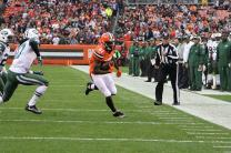 Steve Stelljes (Cleveland Browns)