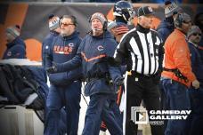 Steve Stelljes (Chicago Bears)