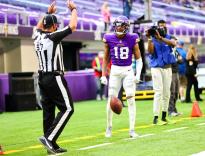 Joe Blubaugh (Minnesota Vikings)