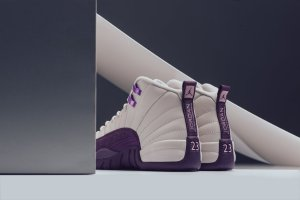 Air Jordan 12 Pro Purple