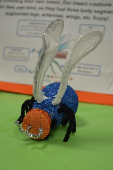 Invent & create an insect project