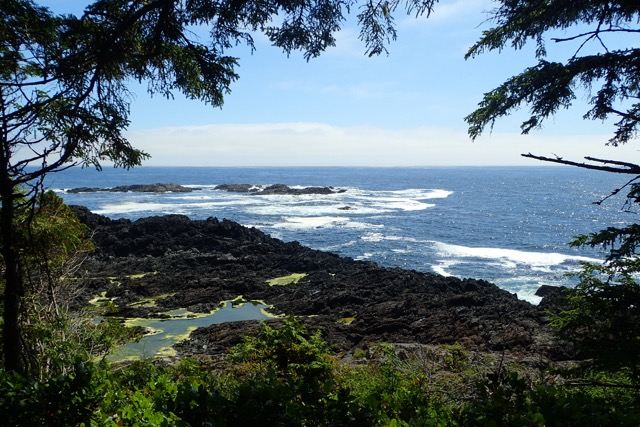 wild pacific trail hike