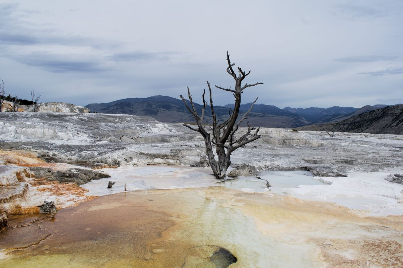 Yellowstone landscape for USA lessons