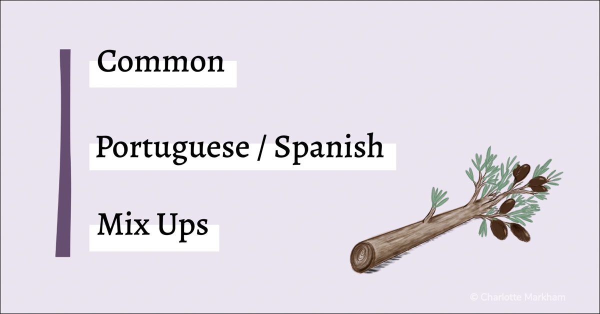 Common Portuguese Spanish Mix Ups Olive Branch graphic
