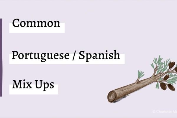 Common Portuguese Spanish Mix Ups Olive Branch graphic