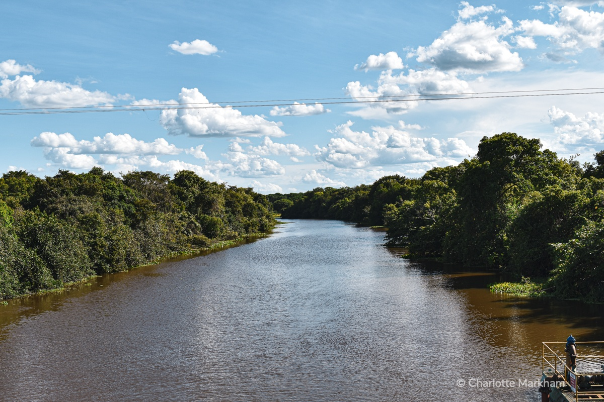 Amazon river in Pantanal