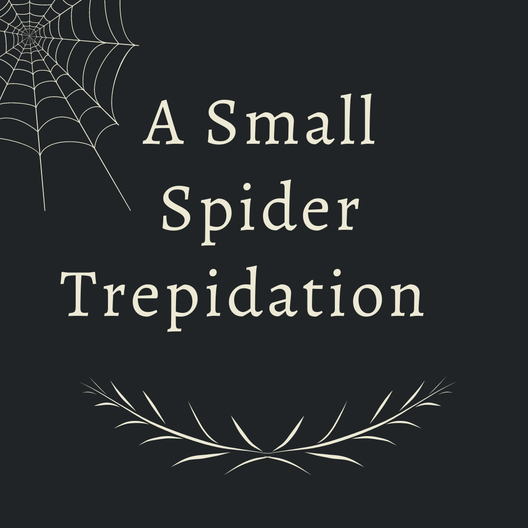 A Small Spider Trepidation graphic