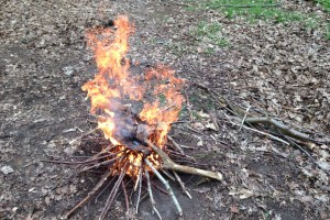 bush craft fire lighting