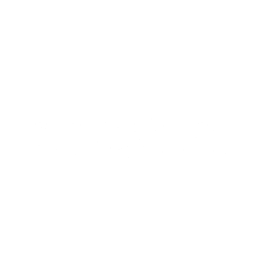 safestorelogo white
