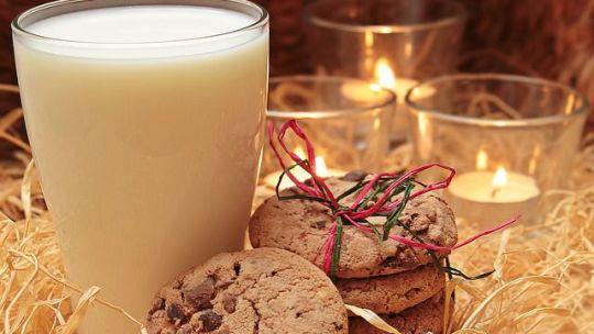 A Good Old Forage – Milk Kefir Grains