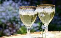 Popping Your Cork for a Cool Glass of Elderflower Champagne
