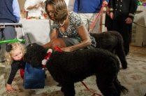 Michelle Obama e Sunny | © JIM WATSON / Getty Images
