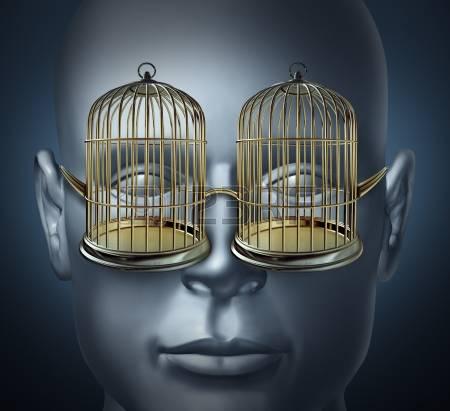 bird cage 8