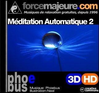 Méditation automatique 2011