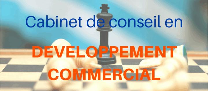 cabinet conseil developpement commercial lyon
