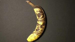 HOW TO TATTOO A BANANA, And Other Fun Things To Do With Your Stupid Kids