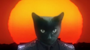 "SO, YEAH, THIS HAPPENED: Cover of Daft Punk's ""Get Lucky"" Sung By Actual Cat"