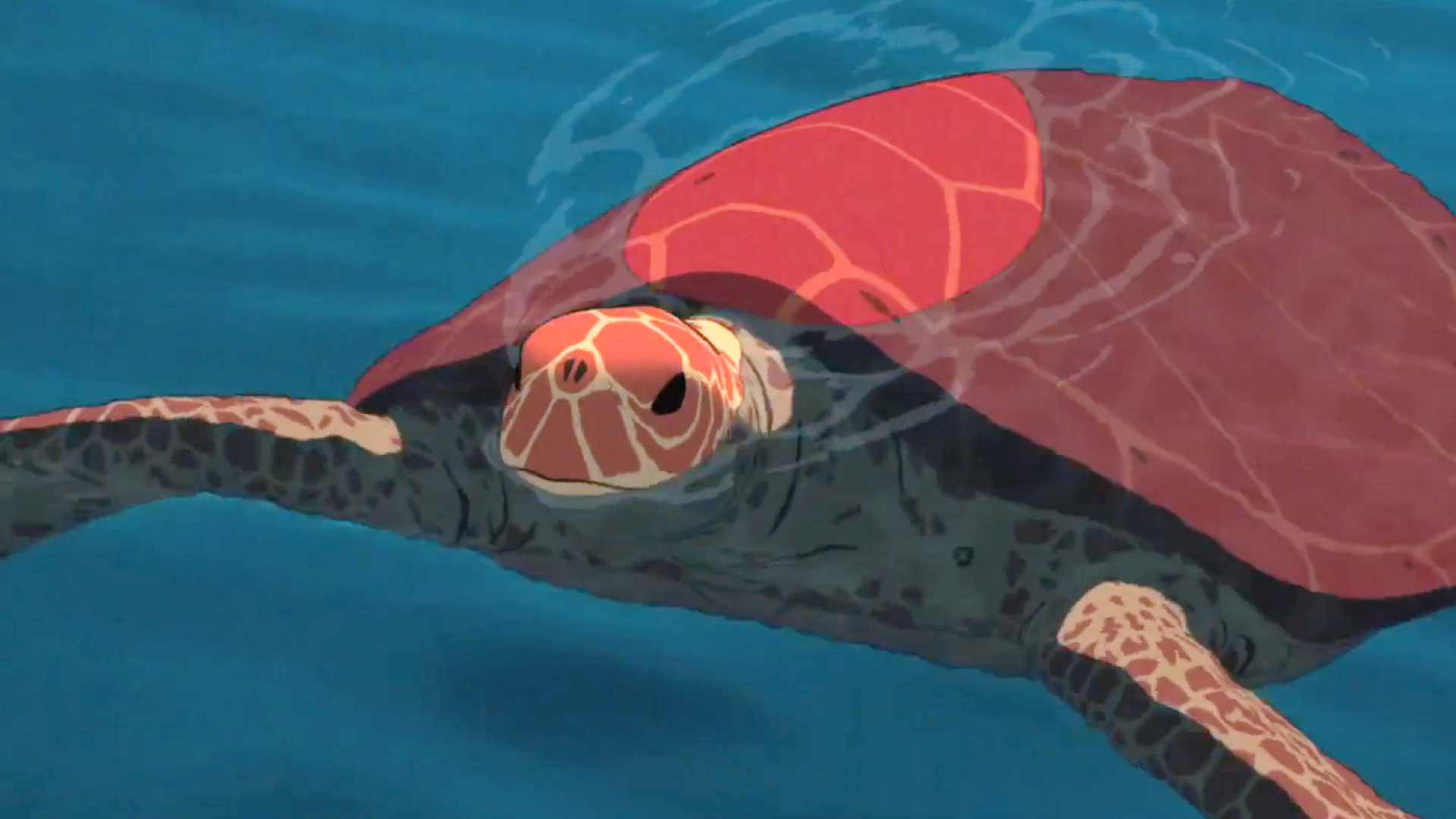 theredturtle_trailer