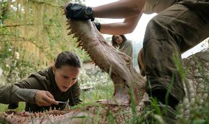 'Annihilation' (review)